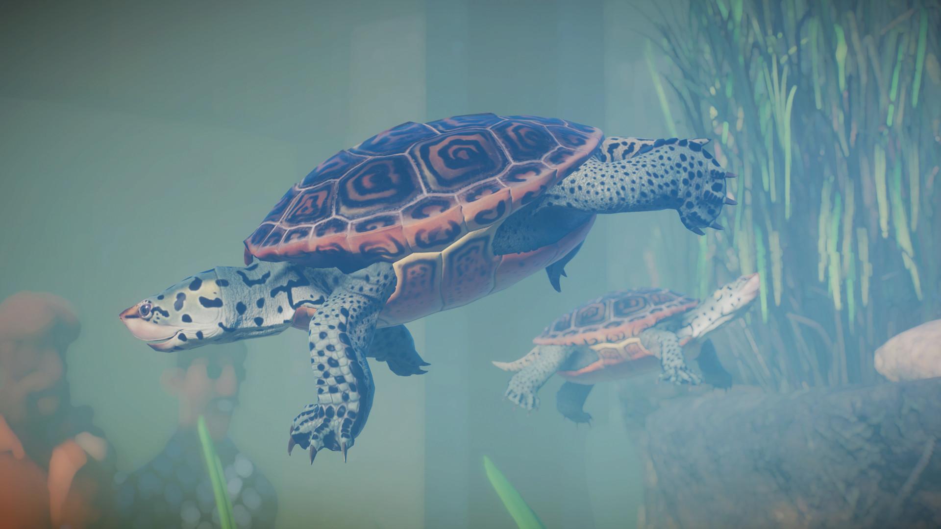 Planet Zoo: Aquatic Pack PC Fiyatları