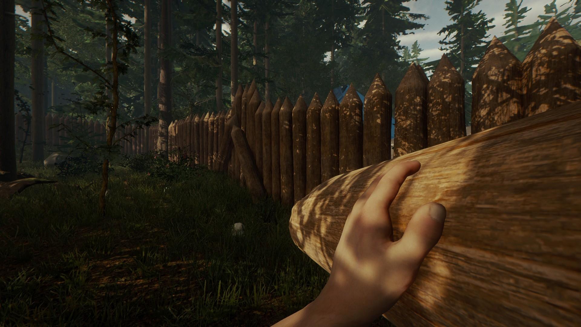 The Forest PC Fiyatları