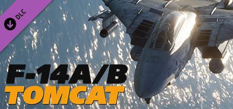 DCS: F-14A/B Tomcat