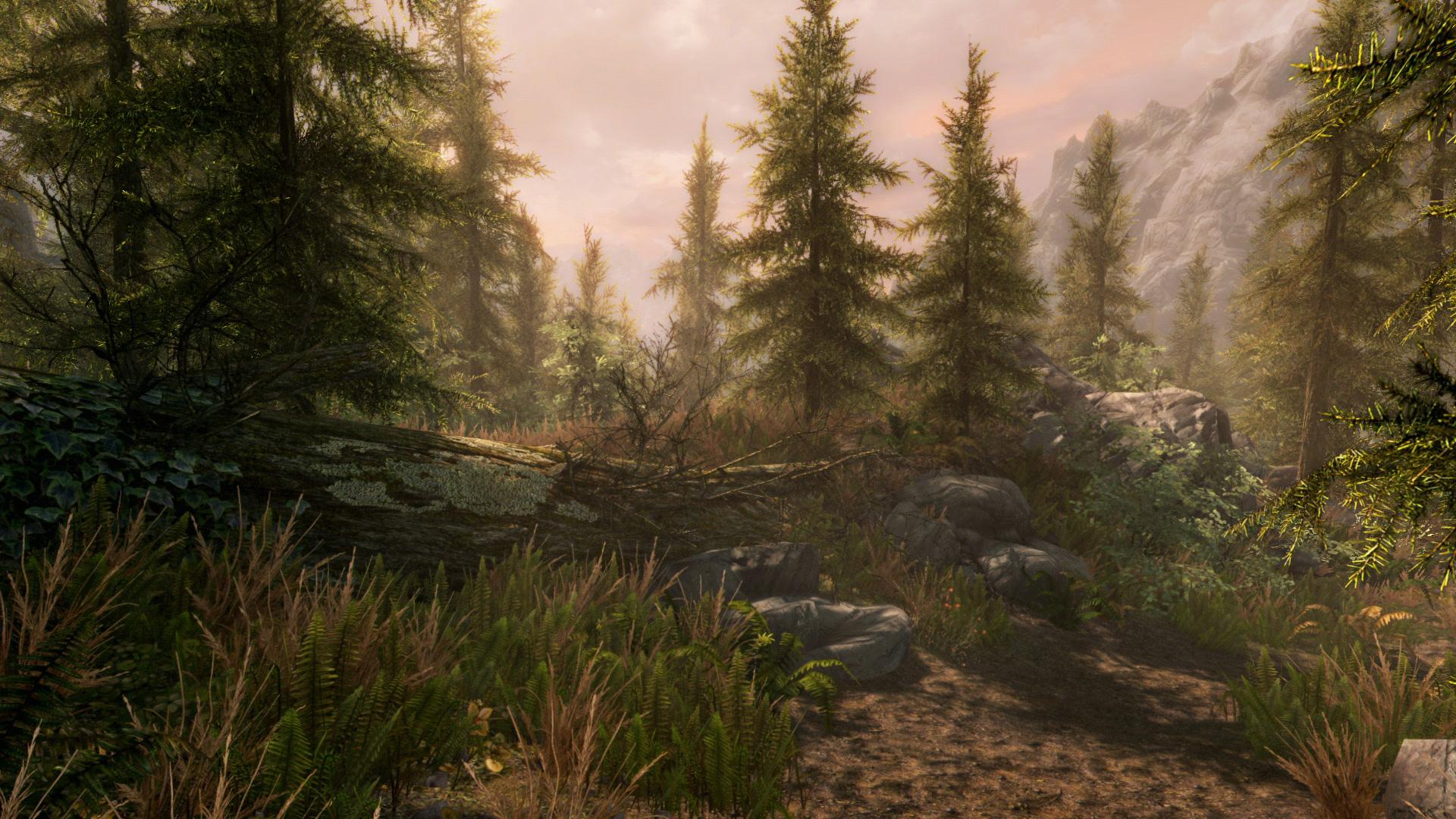 The Elder Scrolls V: Skyrim Special Edition PC Fiyatları